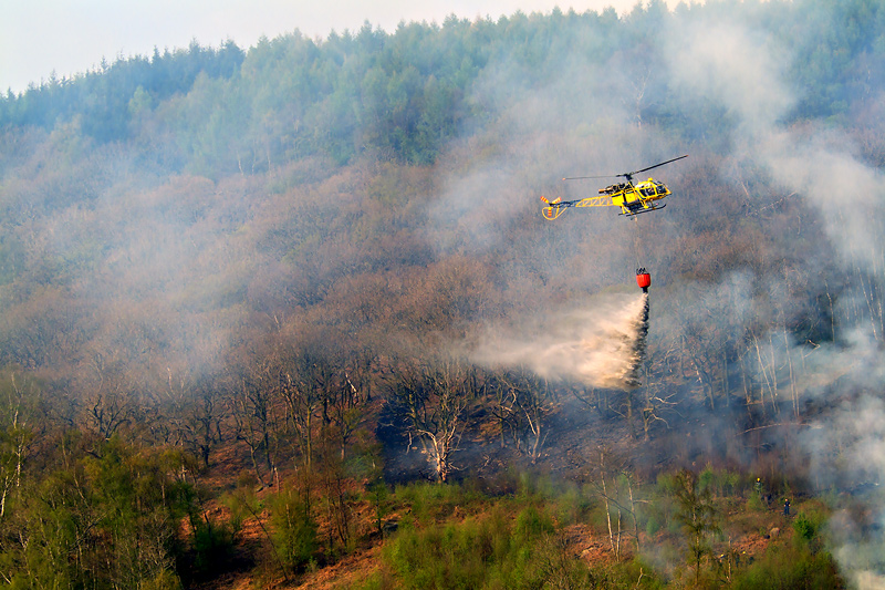 Dropping water on a fire near Mountain Ash