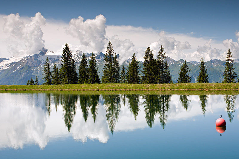 Schmittenhöhe Zell am See Trail: Mountain Lake and Firs