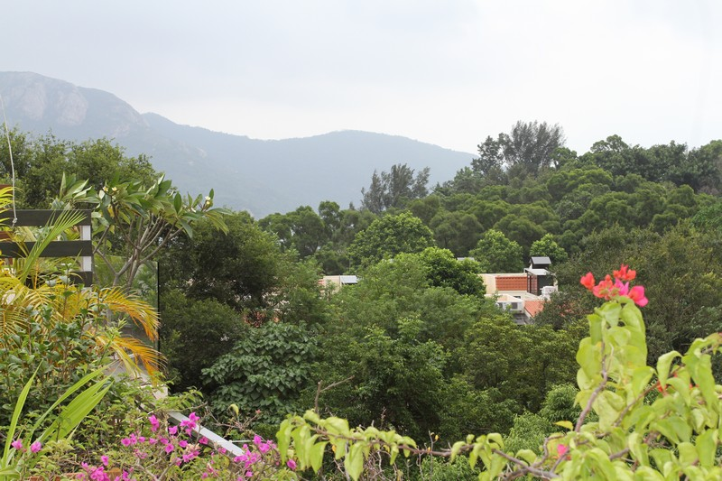 View from roof -between end of trees and mountain is South China Sea