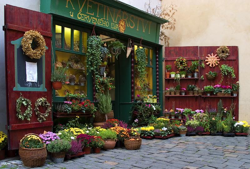 Kvetinarstvi Garden Shop