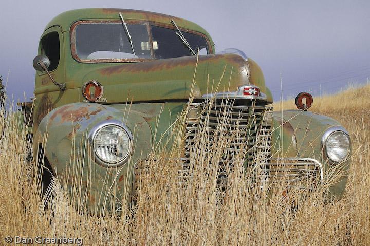 Late 40s International in a field