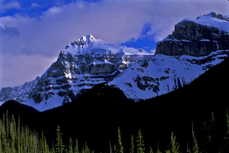 Canadian Rockies, Jasper National Park, Alberta, Canada