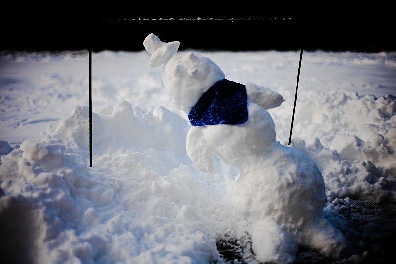 Limbo Frosty
