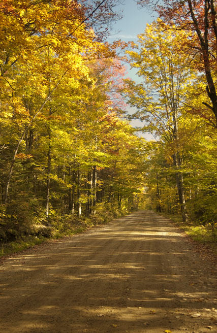 New Hampshire Country Road