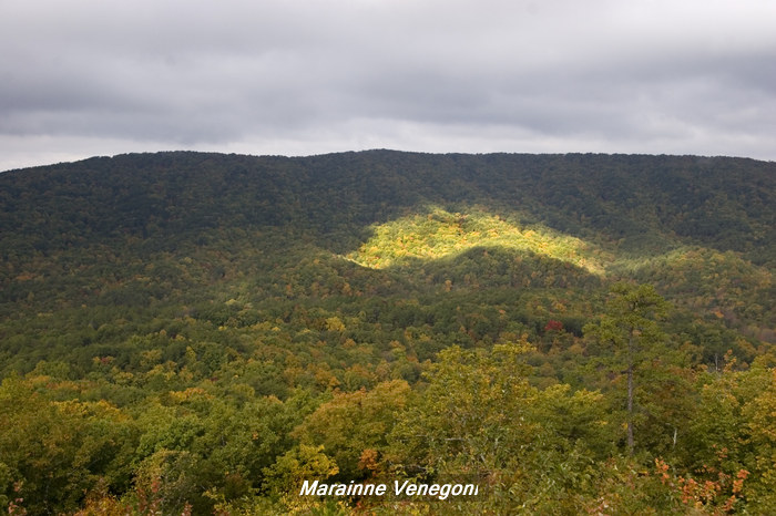 Cheaha Mountian view