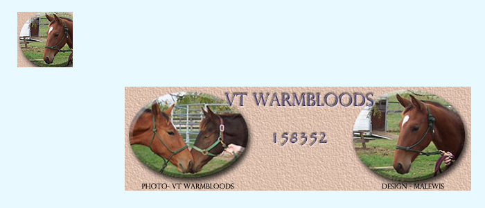 VT Warmbloods: Signature and Avatar on Forum Background