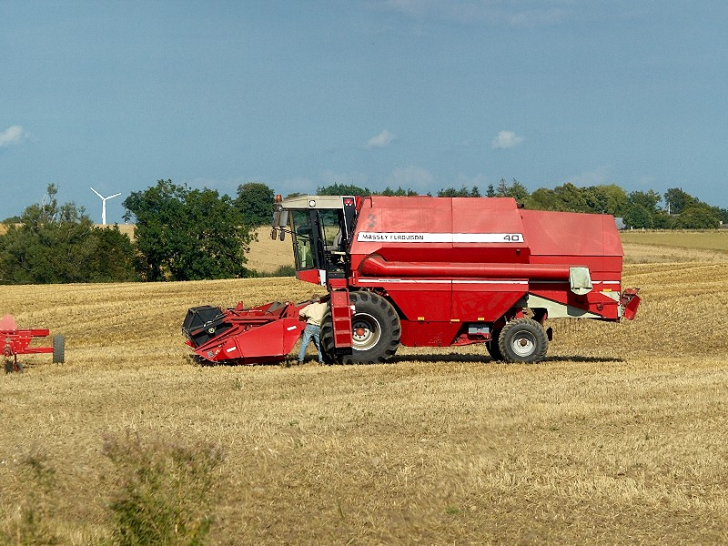 2009-08-22 Harvest