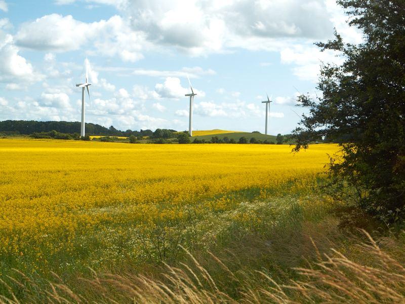2011-06-24 Wind turbines