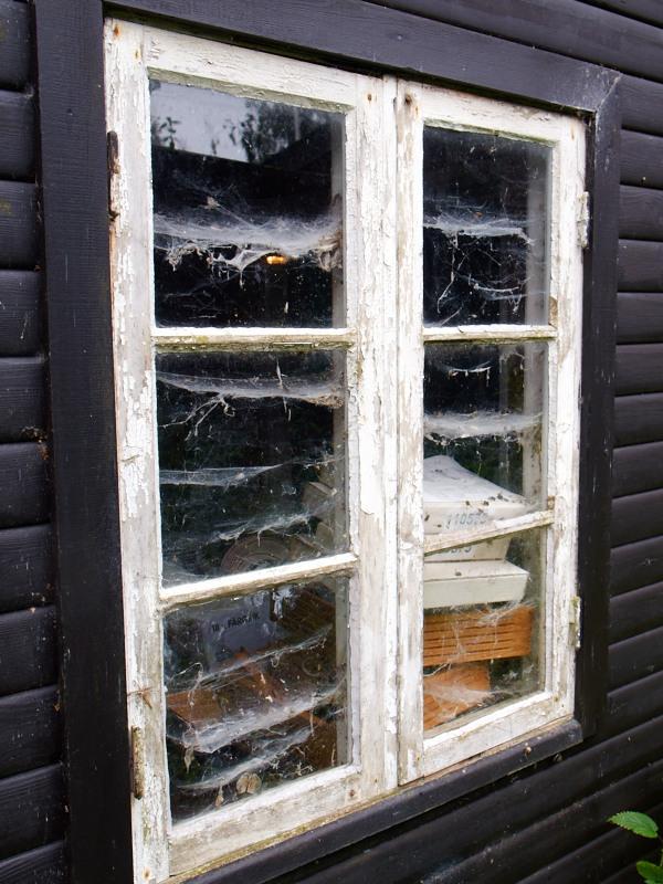2011-07-10 Old window