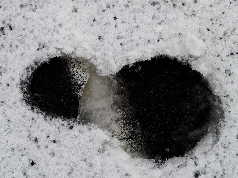 Foot in melting snow