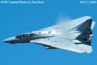 USN F-14 Tomcat from VF-101 Grim Reapers military aviation air show stock photo #4122