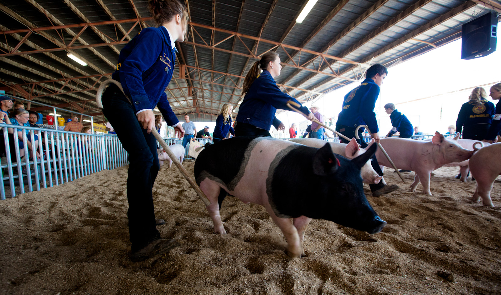 Walla Walla County Fair <br>(SE_WA_083112_1171-12.jpg)