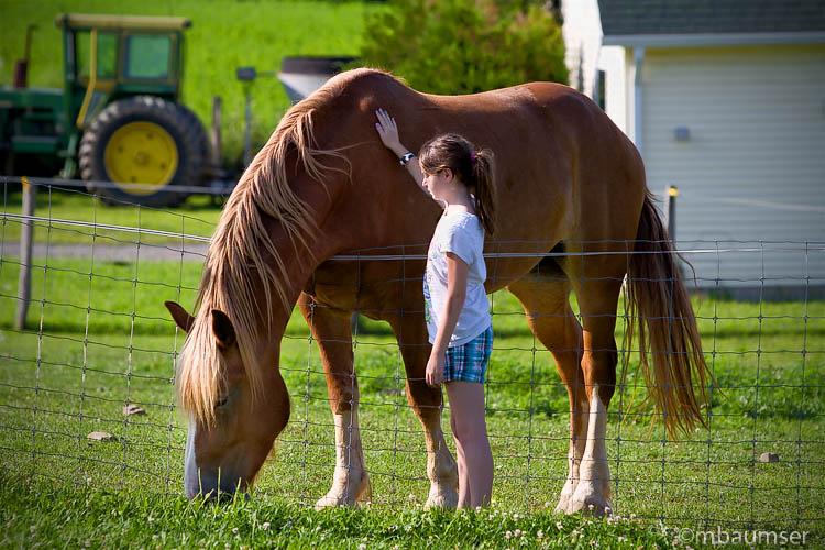 Lea and Horse II