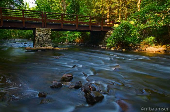 Bridge Down Stream