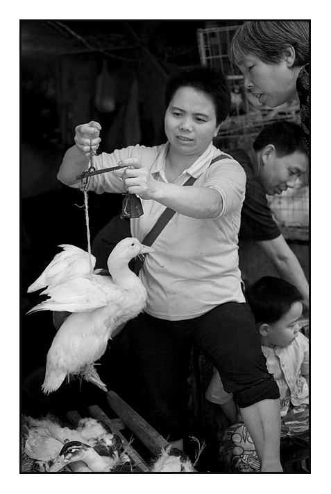 Street Market - Buying A Duck