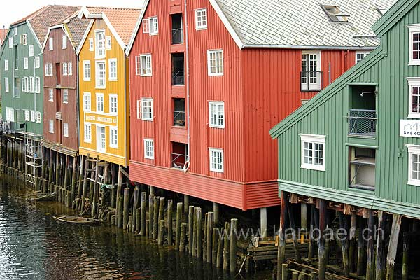Trondheim (82984)