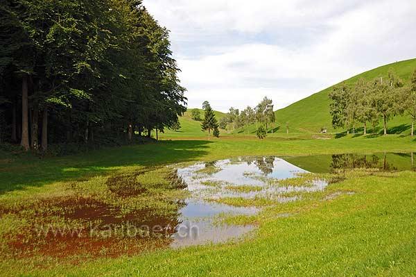 Twaerfallen (114032)