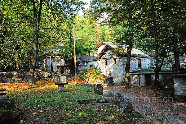 Grotti (117169)