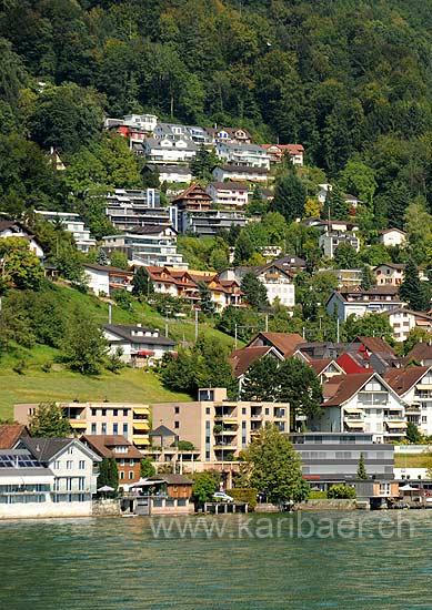 Walchwil (115362)