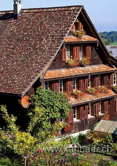 Bauernhaus / Farm House (4578)