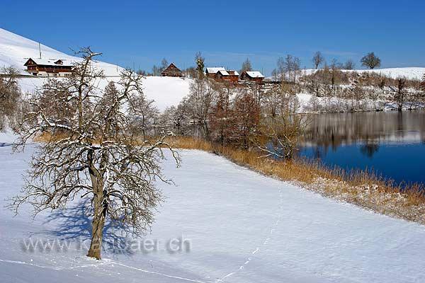 Wilersee (89923)