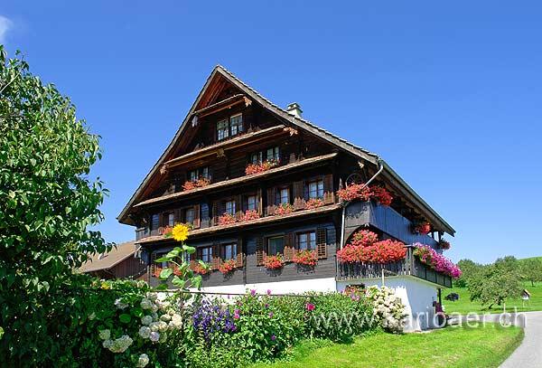 Bauernhaus (77733)