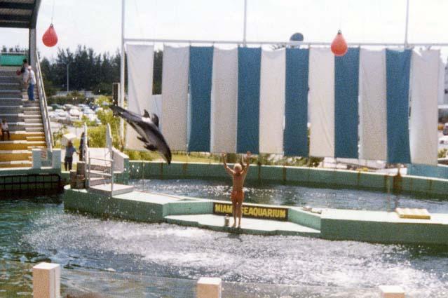 1970s - the Miami Seaquarium