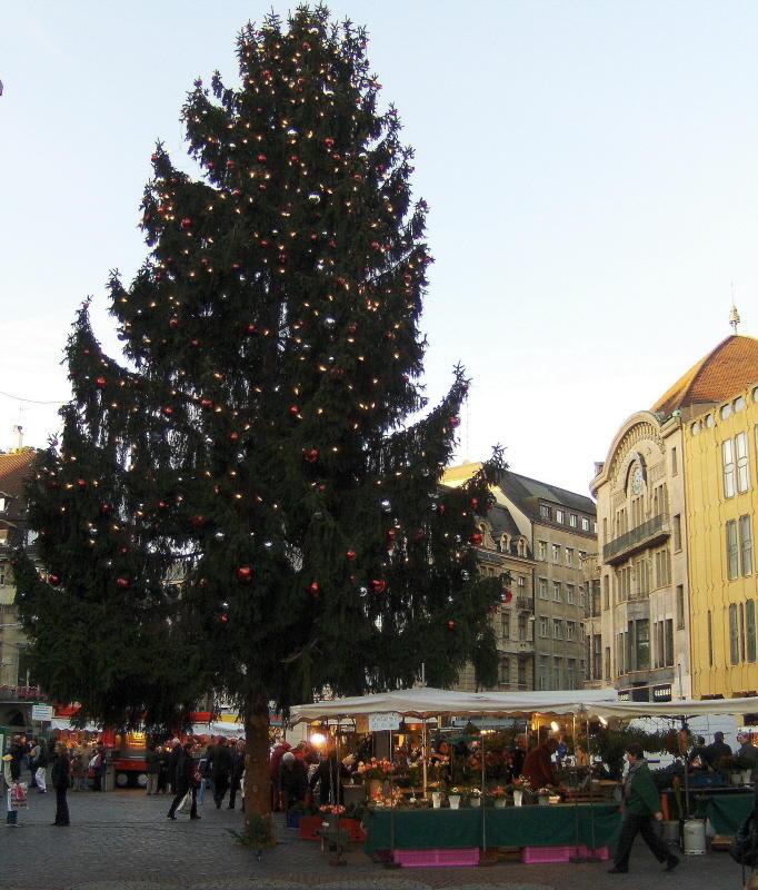 Markt Platz Christmas tree