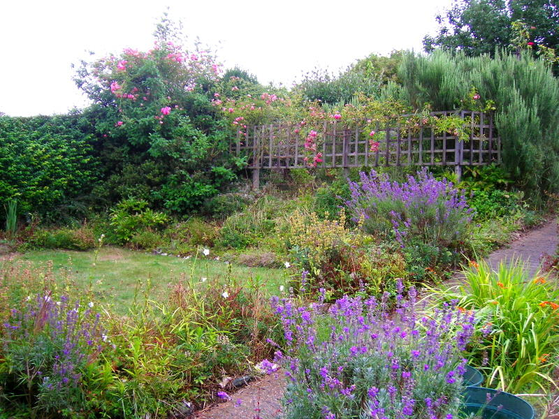 GARDEN AT MOTHERS HOME.