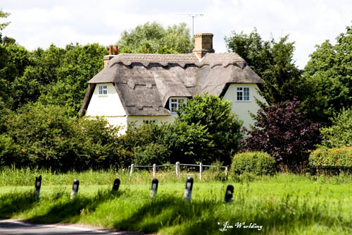 Country cottage [4]