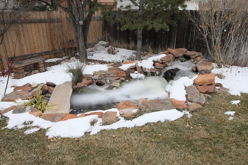 Back Yard Pond (7492)