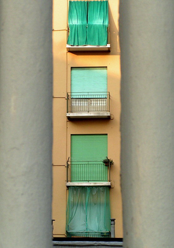 green windows