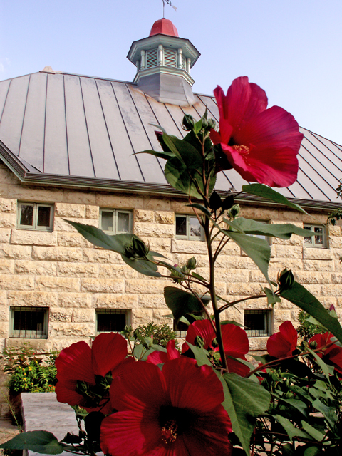 6-12-2011 Botanical Garden