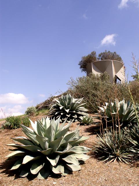 6-12-2011 Botanical Garden 14.jpg