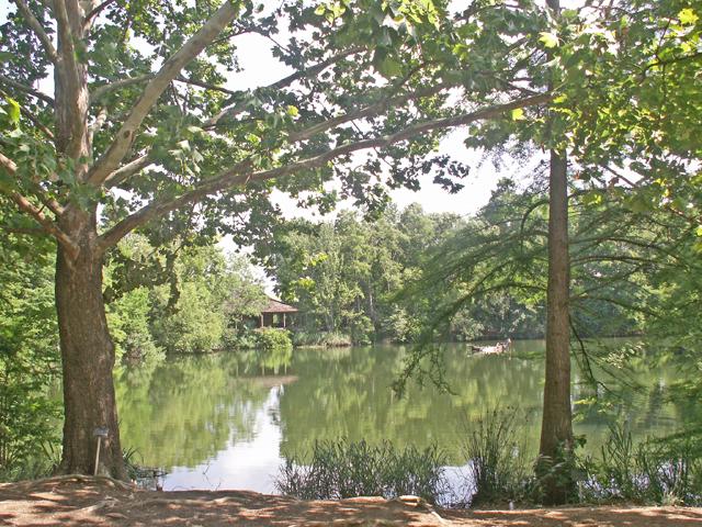 6-12-2011 Botanical Garden 28.jpg