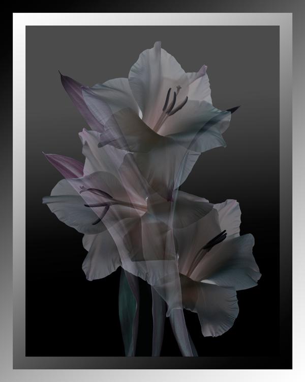 Overtones-Marsha_Tudor