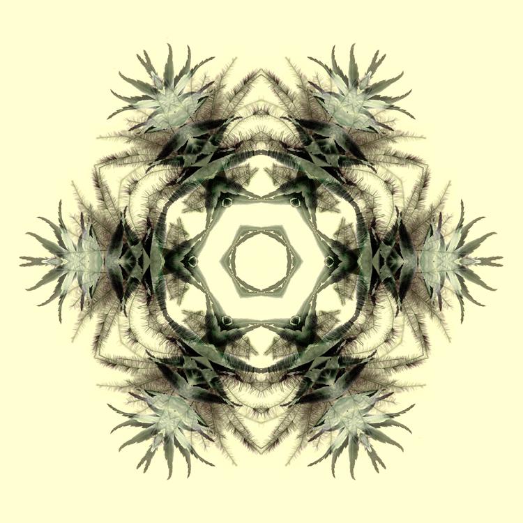 Ghost_Array_IV-on-Yellow-Marsha_Tudor.jpg