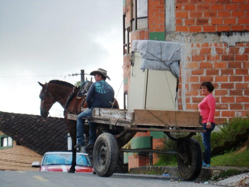 Horse, Cart, and Fridge.jpg