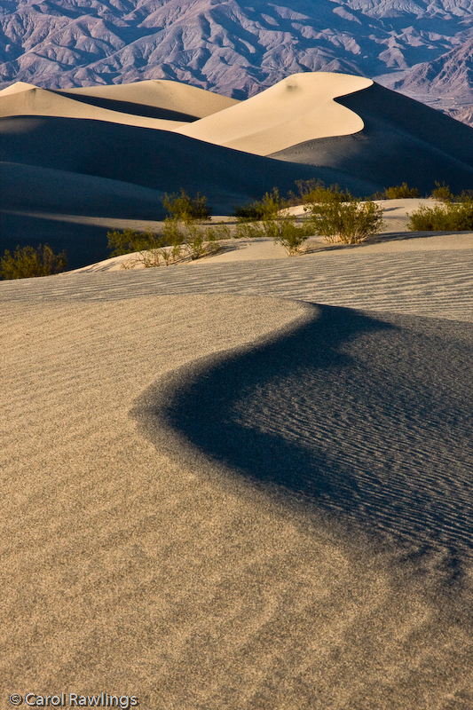 Mesquite Dunes at Stove Pipe Wells