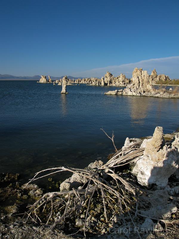 IMG_0310 Mono Lake .jpg