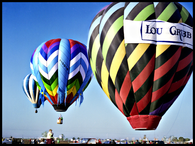 balloons 260.jpg