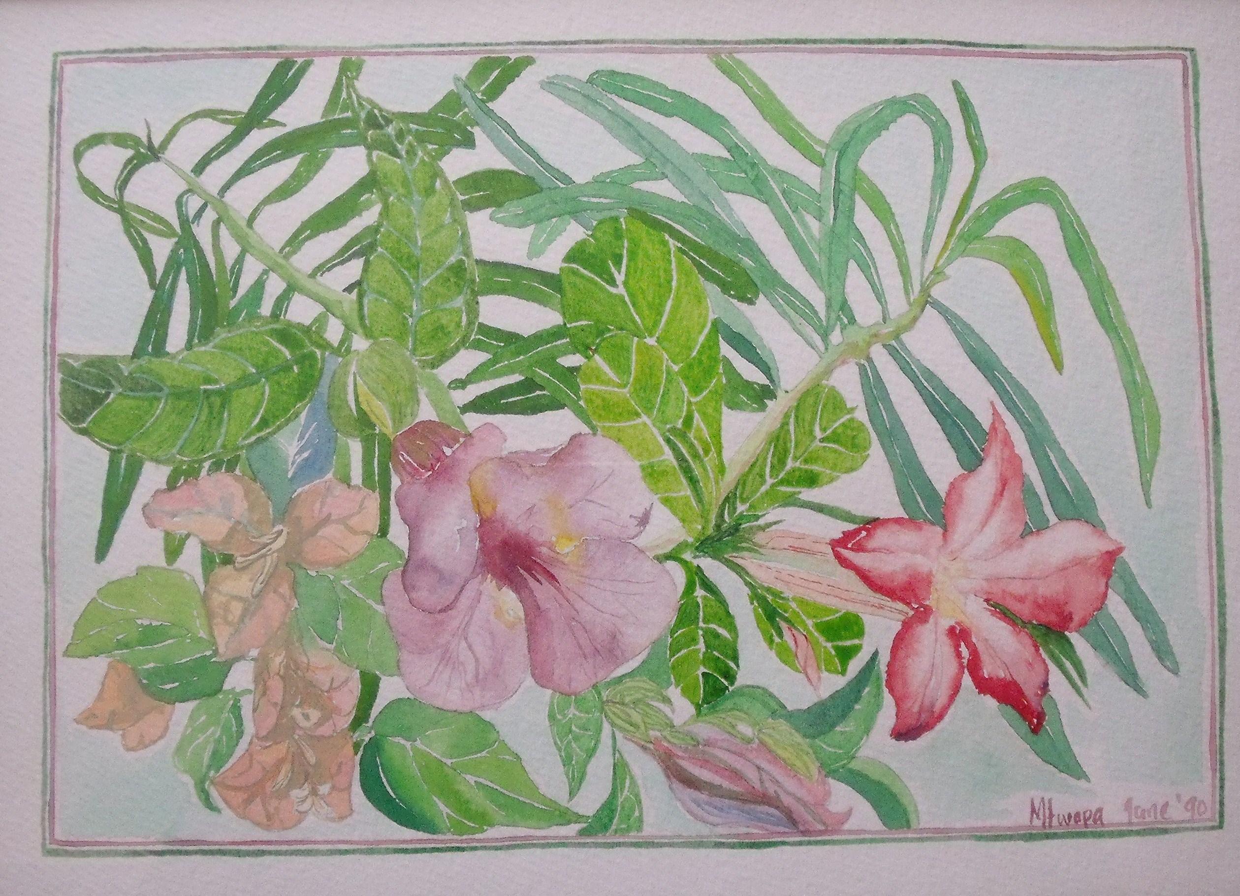 matwapa flowers
