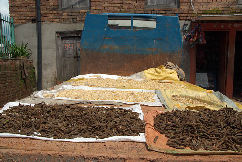 Peas and Corn Drying on a Truck