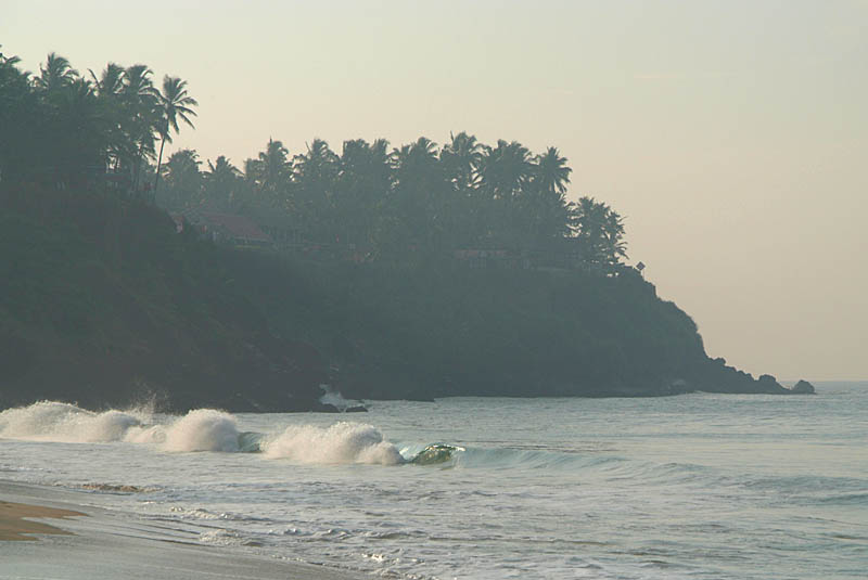 Waves and Palms from Black Beach Varkala
