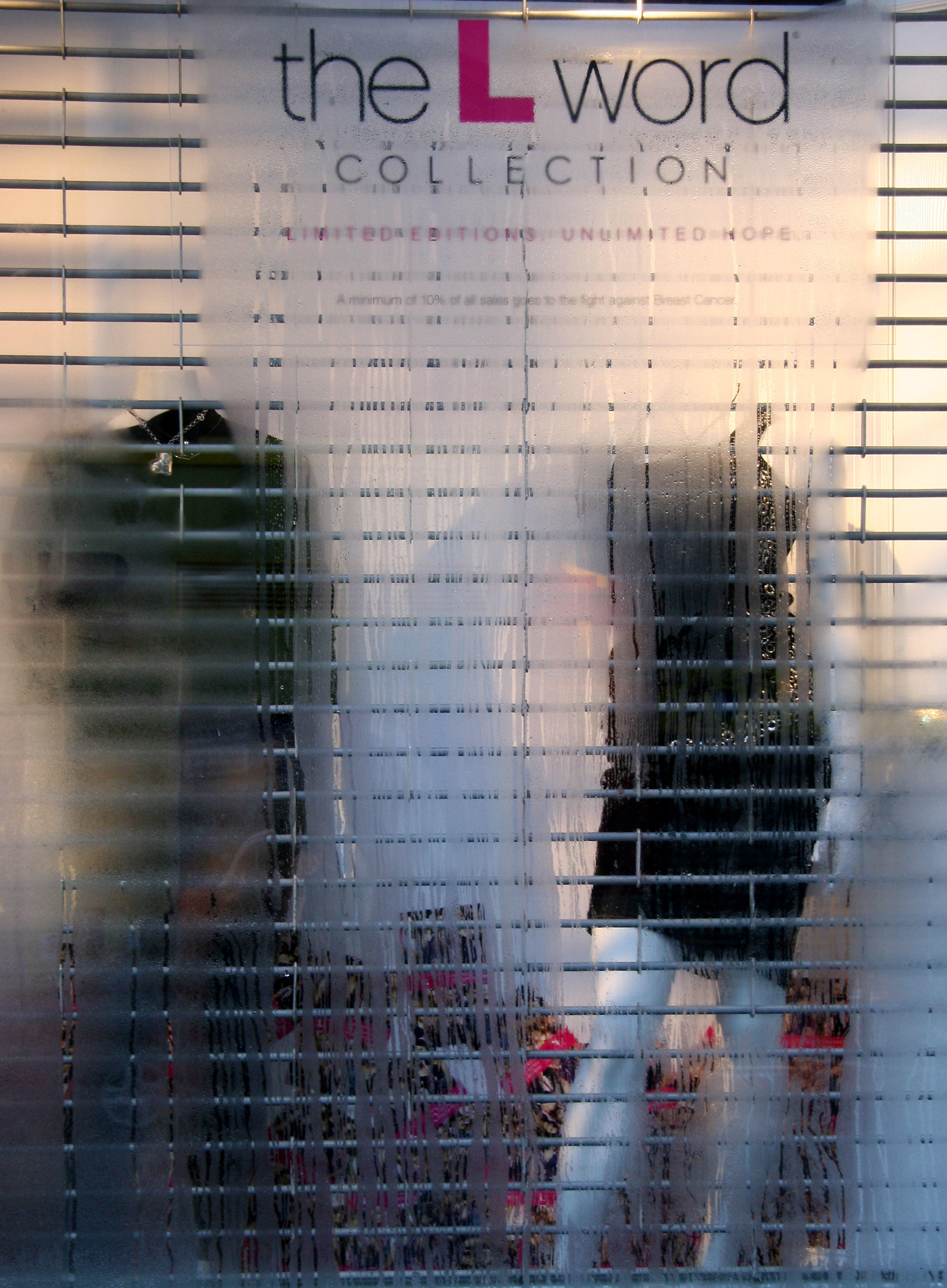 Atrium Clothing Store Window with Condensation