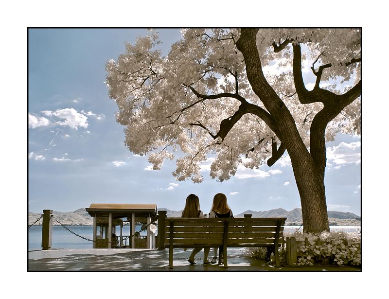 湖濱二公園