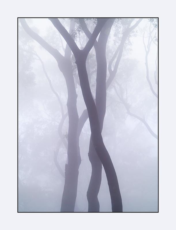 20121130-08 as Smart Object-1.jpg