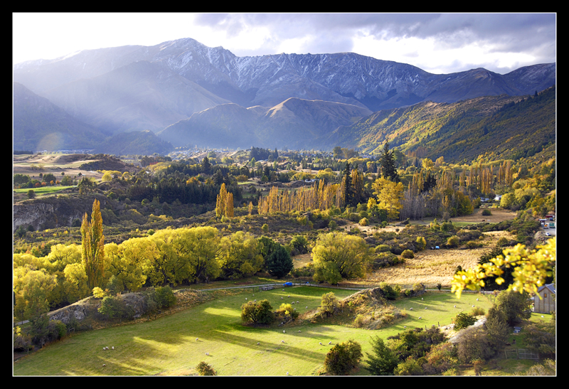 NZ2007-1401.jpg