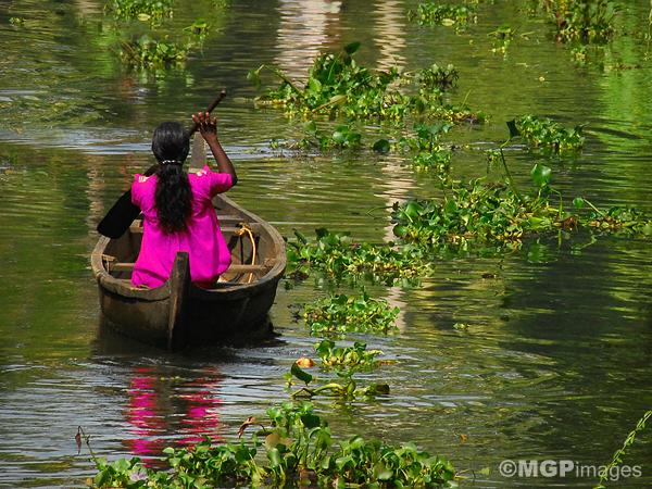 Alleppey,  Kerala, India