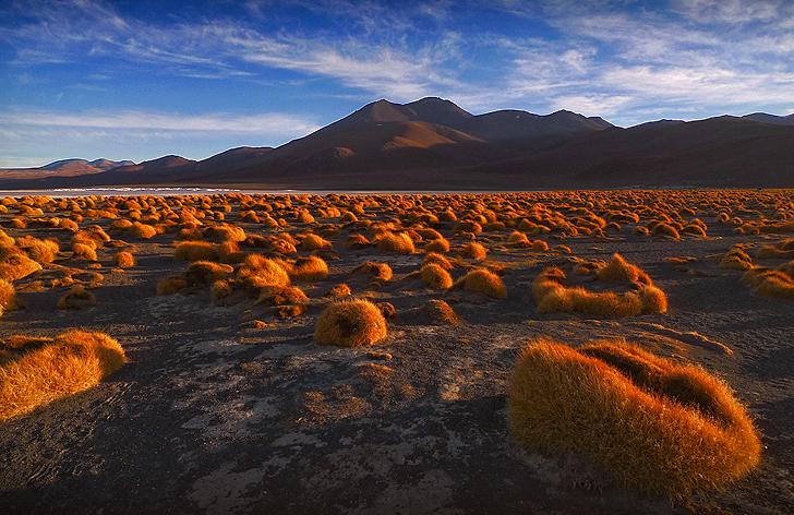 Reserva Eduardo Avaroa, Bolivia
